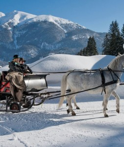 Tirolo-Post_Hotel_Carrozza-540x640